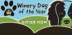 An image depicting Winery Dog of the Year