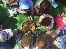 An image depicting Toddlers & Tadpoles - Wednesdays Term 1