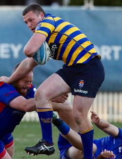 An image depicting Sydney Uni v Manly | Shute Shield Round 17