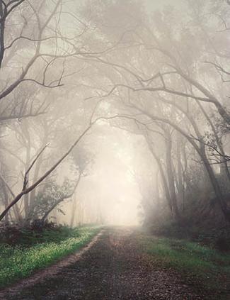 An image depicting Light Visions, Dark Intervals